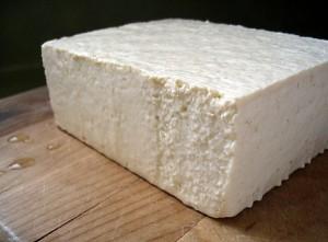 blockotofu